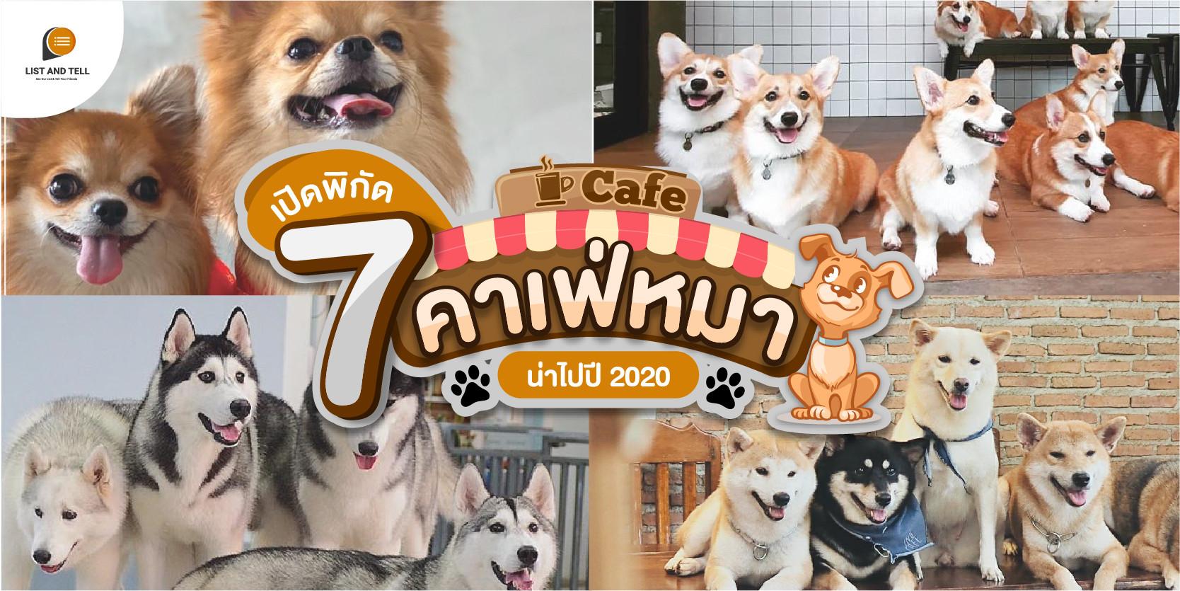 เปิดพิกัด 7 คาเฟ่หมา น้องใจดี อาหารอร่อย อัปเดตทั่วประเทศปี 2020