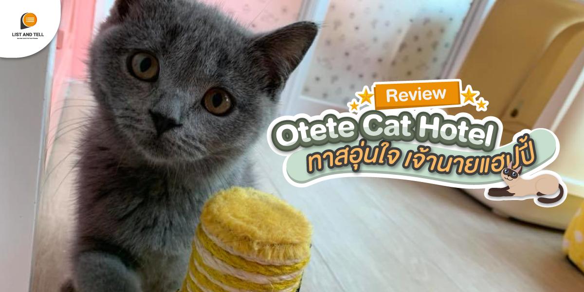 พารีวิว Otete Cat Hotel โรงแรมแมวแสนมิตรภาพ ทาสอุ่นใจ เจ้านายแฮปปี้
