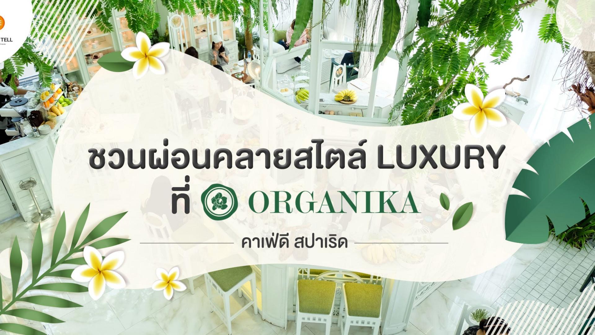 Organika Bangkok คาเฟ่พร้อมสปา ส่วนผสมของการผ่อนคลายที่ลงตัว