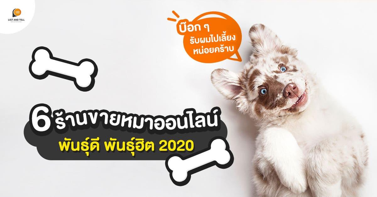 เปิดพิกัด 6 ร้านขายหมาออนไลน์สายพันธุ์ฮิต โดนใจคนรักหมา ปี 2020