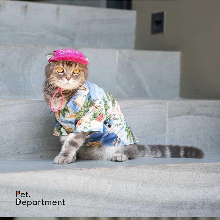 Pet.department